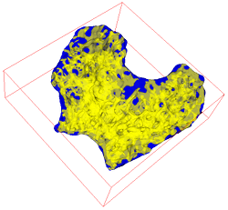 Surface meshes of an irregular ROI (blue) and trabeculae within it (yellow)
